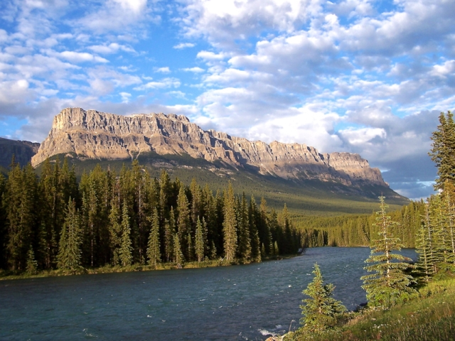 Castle Mountain, Banff NP, Canada, National Park, Canadian Rockies, River, Nature, Trees