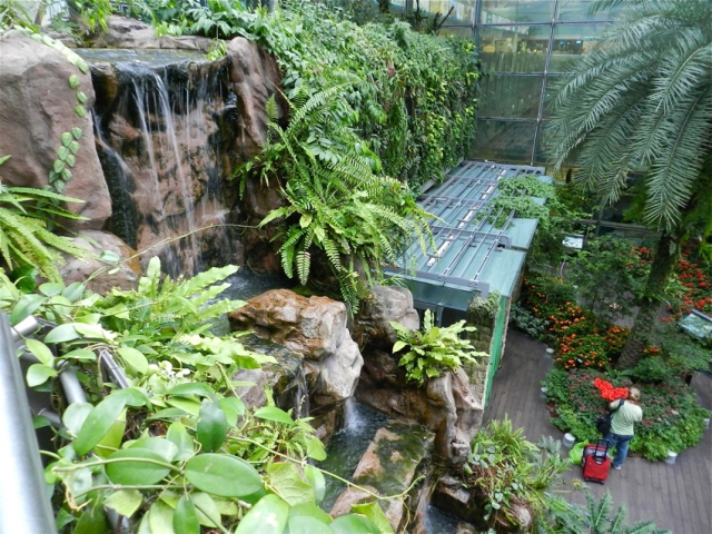 Butterfly Garden, Changi Airport, Singapore