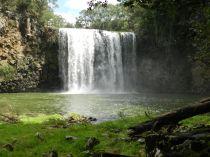 Dangar Falls 1, Dorrigo NP