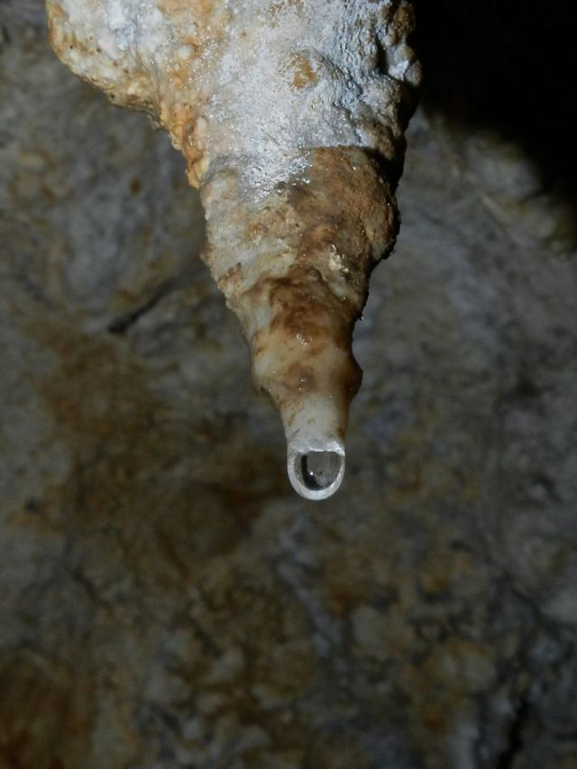 Drip from a stalactite