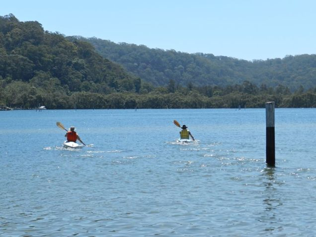 Paddling up Patonga Creek