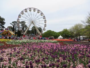 Ground View, Floriade