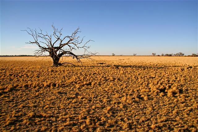 Outback Australia, Barren Land, Isolated, Isolation