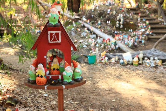 The last of the Gnomes!