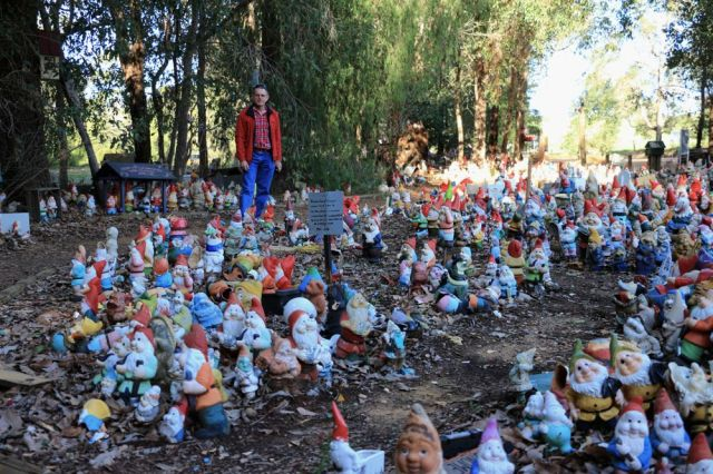 Mr Oz, surrounded by Gnomes