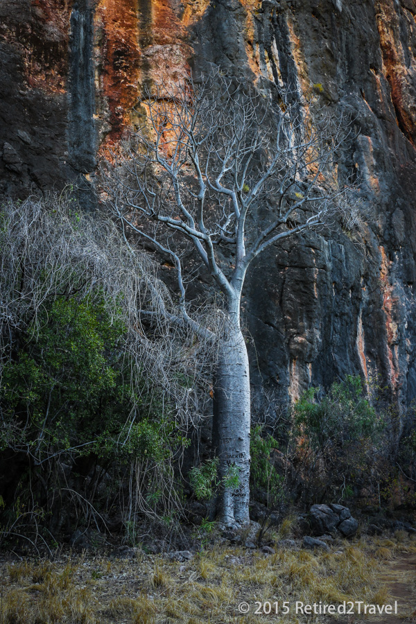 Windjana Gorge NP, (9 of 11) August 2015