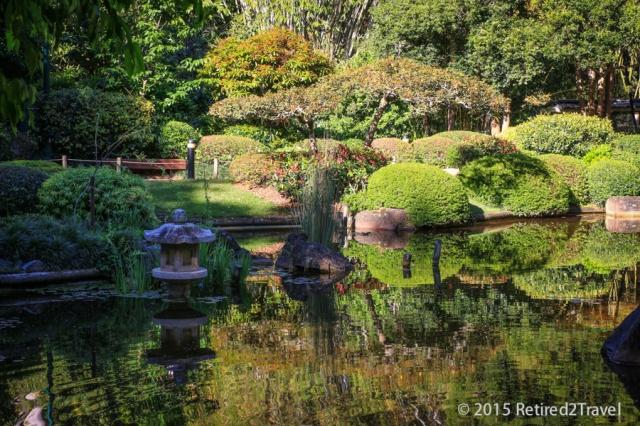 Brisbane Botanic Garden, QLD 3 Oct 2015, (15 of 36) October 201503