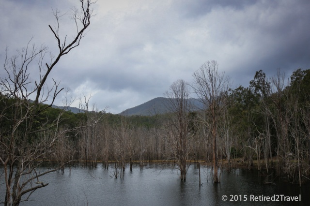 Hinze Dam, QLD, 8 Oct 2015, (18 of 42) October 201508