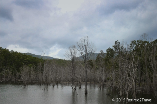Hinze Dam, QLD, 8 Oct 2015, (21 of 42) October 201508