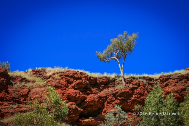 Karijini NP 1, (88 of 138) July 2015