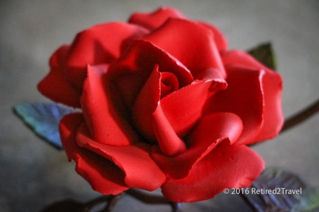 Roses, (4 of 5) February 2016